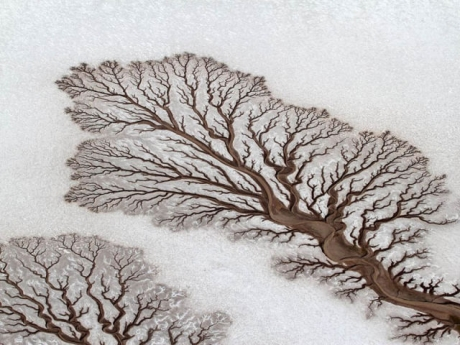 Fractal_Patterns_In_Dried_Out_Desert_Rivers.jpg